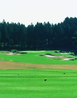 Beautifully manicured from tee to green! Harunanomori Country Club