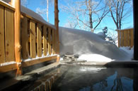 Outdoor Hot Springs (Rotenburo)