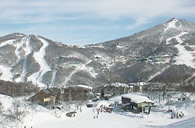Minutes Away from Popular Ski Slopes